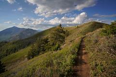 DSC00954 (kyleddsn) Tags: hiking utah ogden spring