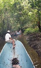 img079 (deepchi1) Tags: irianjayawestpapua irian jaya west papua irianjaya westpapua indonesia stoneagepeople island jungle primitive canoe navigate