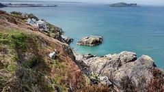 Howth Cliff Walk (Raúl Alejandro Rodríguez) Tags: mar sea acantilados cliffs rocas rocks isla island puerto port howth irlanda ireland