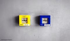A nice pair. (Acropolis Museum, Athens) (Rudike) Tags: siemens yellowandblue blue yellow