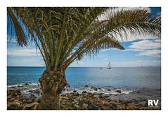 Puerto del Carmen - G16 2018-2792b (ROBERTO VILLAR -PHOTOGRAPHY-) Tags: photografikarv lzphotografika lanzarotephotográfika imagenesdelanzarote fotosdelanzarote photobank mejorconunafoto canong16 puertodelcarmen