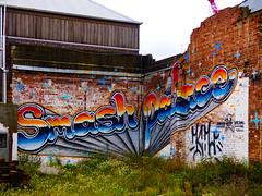 Smash Palace (Steve Taylor (Photography)) Tags: smashpalace wongiwilson mural graffiti streetart tag crane blue black brown green grey white brick newzealand nz southisland canterbury christchurch cbd city weeds outline star