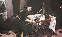 Laundromat Dash (~GraceSixpence~) Tags: anxiety blush bueno catwa fabia fameshed jian letre maitreya mp mulloy spirit theskinnery uber yummy sl slfashion secondlife