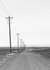 Far Behind (John Westrock) Tags: blackandwhite road gravel telephonepole overcast washington pacificnorthwest canoneos5dmarkiii canon135mmf2lusm rural nopeople