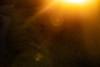 Morning Flare (zenseas) Tags: whiterhinoceros morning wild workingholiday workingvacation early rhino whiterhino southafrica rhinoceros vacation africa holiday ceratotheriumsimum sunflare explore explored