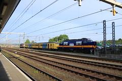 Railexperts 1251, 9901 en stichting mat.64 904 te Amersfoort (vos.nathan) Tags: railexpert 9901 1251 stichting mat 64 materieel plan v ns nederlandse spoorwegen 1200 amersfoort amf