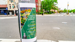 2018.05.06 Vermont Avenue, NW Garden - Work Party, Washington, DC USA 01894