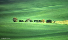On the waves of a Green ocean (Q-lieb-in) Tags: czechrepublic qliebin minimalism moravia serenity church fields