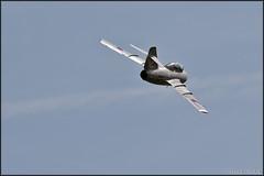 CS-102 / MiG-15UTI (Pavel Vanka) Tags: mig15uti mig mig15 midget cs102 czechairforce czechoslovak czechoslovakairforce czechflyinglegends plasy lkps airshow aircraft fly flying plane airplane dayintheair czechrepublic aeroclub denvevzduchu jet fighter