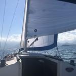 sailing thumbnail