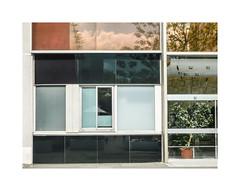 Patchwork (hélène chantemerle) Tags: urbain bâtiment fenêtres vitres virtine reflets building windows glasses reflections urban