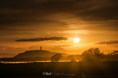 Cambus - 10 May 2018 - 54 (ibriphotos) Tags: dogwalk onetree warm wallacemonument river benledi cambus riverforth sunset summer spring aroundtheforth clackmannanshire evening goldenhour sky sunsets