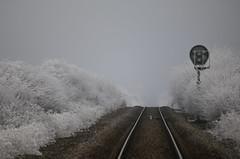 chemin de fer (cc .. jeckle) Tags: canon 760d chemin de fer froid glace perspective train lignes ice lines