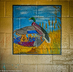 20171120_LANCASTER and WV_20171120-BFF_4987WV Penitentiary-_HDR (Bonnie Forman-Franco) Tags: penitentiary abandoned abandonedphotography abandonedprison abandonedpenitentiary prisonwallart prisonerpaintings westvirginia westvirginiapenitentiary westvirginiaprison jail moundsville photoladybon bonnie photography photographybywomen prison hdr yellow colorful nikon nikonphotography nikond750 wallart