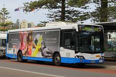 2090-ST, Western Esplanade, Manly, September 12th 2014 (Southsea_Matt) Tags: 2113st 2113 route142 volvo b12blea customcoaches cb60 evoii september 2014 autumn canon 60d australia sydney newsouthwales manly westernesplanade bus omnibus transport