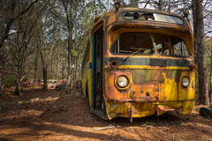 Going Home Now (Wayne Stadler Photography) Tags: preserved overgrown retro vintage rustographer automotive abandoned classic schoolbus derelict bus vehiclesrust rusty junkyard georgia oldcarcity rustography buses white