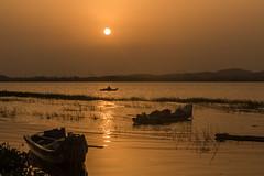 Kolavai Lake (Velachery Balu) Tags: kolavailake chennai chinglepet dawn surnise fishing paddleboarding fishermen clouds fish boat thechennaiphotowalk cpw123