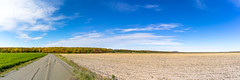 ile 2018-77 (Tasmanian58) Tags: panorama orleansisland iledorléans field champs automne autumn fall batis2818 batis zeiss sony a7ii sky colors leaves quebec canada