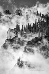 Clearing Spring Storm, Yosemite (Mono) (Peter Maguire) Tags: california mariposacounty yosemitevalley mist