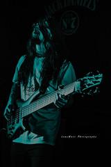 Poster art of a bass guitarist (LensMarcPhotography) Tags: