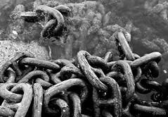 Chains of love (Franco D´Albao) Tags: francodalbao dalbao lumix cadenas chains bn bw mar sea agua water hierro iron