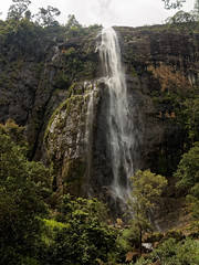 Diyaluma Falls (idanona) Tags: diyalumafalls water wasser srilanka