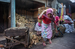 carrying coconut (kuuan) Tags: indonesia voigtländerheliarf4515mm manualfocus mf voigtländer15mm aspherical f4515mm superwideheliar apsc sonynex5n solo surakarta street java market bazaar pasar pasarlegi coconut worker carrying heavyload woman women