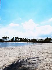 Beach (realwallpaper) Tags: superalgarve portugal lisboa lisbon porto oporto acores azores madeira algarve beach visitportugal faro igportugal amaralgarve algarvecoast beautifuldestinations awesomeearth thebestdestinations nightshot bestvacations aplacetoremember atlanticocean worldtourists praiadoamado awesomedreamplaces superportugal shabbatshalom mediterranian sunset