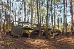 Overdone (Wayne Stadler Photography) Tags: abandoned preserved junkyard georgia classic automotive derelict overgrown vehiclesrust rusty retro vintage oldcarcity rustographer rustography white