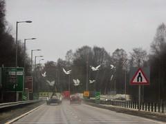 Roundabout Balloch, Scotland (Alta alatis patent) Tags: scotland roundabout balloch sign birds art