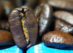 Jamaica Blue Mountain coffee beans (Engin Süzen) Tags: macro makro macrophotopraphy macromondays foodporn foodphotography foodphoto coffee m43 m43turkiye olympus olympusem1markii olympusomdem1markii olympus45mmf18