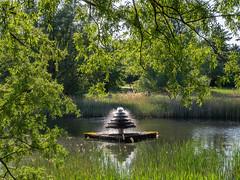 P5131994 (Photodendron) Tags: em1mk2 britzergarten