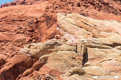 Valley Of Fire Contrasting Shades (freshairphoto) Tags: red rocks beige formation contrast valleyoffire desert state park overton nevada artspearing nikon d500 18200 zoom handheld