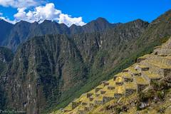 Terraces of Machu Picchu / Террасы Мачу Пикчу (Vladimir Zhdanov) Tags: travel peru andes landscape nature mountains sky cloud machupicchu ancient ruins forest rainforest grass