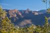 Catalina blur (jimmy_racoon) Tags: 70200 f4l is canon 5d mk2 santa catalina mountains arizona desert landscape tree tucson 70200f4lis canon5dmk2 santacatalinamountains