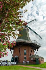 Ostfriesland (bh-fotografie) Tags: ostfriesland sony a7 ii 2470 zeiss carlzeiss za niedersachsen emount