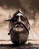 Odysseus (Vincent Mattina (aka FLUX)) Tags: green ship man homer odyssey sepia salt lake mountain clouds digital art photos photoshop voyage