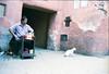 ° (°Bracket) Tags: canonae1p fd35mmf28 morocco marrakech 333bracket 35mm film analogue slr street seller cat animal portrait