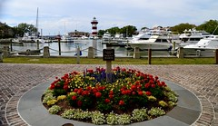 Harbour Town Sea Pines Hilton Head SC (Meridith112) Tags: lighthouse harbourtown harbourtownlighthouse seapines hiltonhead plaid flower flowers boat boating april 2018 spring sc south southcarolina carolinas lowcountry seaislands nikon nikon2485 nikond610 yachtbasin