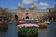 Park Museumplein (steve_whitmarsh) Tags: amsterdam netherlands city urban building architecture flowers colour rijksmuseum