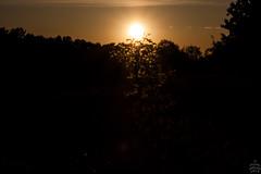 Sunset / @ DRS / 2018-05-01 (astrofreak81) Tags: sunset drs dresden sonne sonnenuntergang
