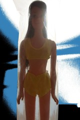 The Answer: Baggie Francie! (DeanReen) Tags: 1970s 70s 1974 74 1975 75 baggie baggy francie francine fairchild fashion model barbie doll mattel straight leg standard mexico mexican hands arms hard brunette casey qucik curl face brown eyes long yellow swimsuit no 7699 vintage mod malibu teenage bikini rare portrait