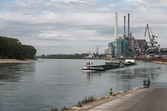 Power plant at the river Rhine (Markus Lehr) Tags: river barge ferrystop riverbanks powerplant trees chimneys crane industrial water manmadelandscape urbanspace mannheim germany markuslehr