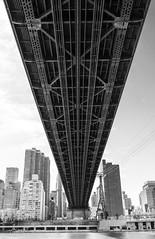 Roosevelt Island (Avaiyang) Tags: brooklynbridge nyc ny nycphotographer newyorkcity newyorker manhattan nyclife newyorkworld oneworldcenter brooklyn dumbo newyorklife nycityworld nightlife skyline lights eastriver