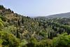 Green scene outside Chora, Andros (BuzzTrips) Tags: andros scenery greekisland greece