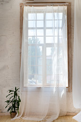 Glass windows with white curtains, flower in a pot on the floor and view over the trees. (lyule4ik) Tags: architecture design floor home house interior large luxury window curtainswindow empty frame furniture glass indoor room sunlight white wood curtain isolated livingroom residence space view apartment comfortable inside light loft modern background baseboard blank board building business clear closeup concept creative creativity curtains gallery hall industry morning office perspective realistic