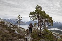 Mountain hike (G E Nilsen) Tags: mountain hike velfjord brønnøy nordnorge northernnorway norwegiancoast trees springtime cloud grass tree sky landscape women