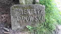 Jewish Cemetery in Kazimierz Dolny, Poland. (Team Ravenpuff) Tags: poland history spring nature forest cemetery