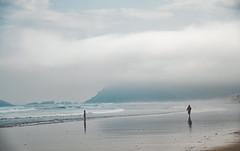 _DSC2002 (adrizufe) Tags: zarautz beach ilovenature nature naturaleza ngc nikonstunninggallery nikon d7000 gipuzkoa basquecountry