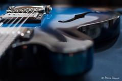 """"""" f """" #2 (Pierrotg2g) Tags: gibson es335 guitare guitar musique music instrument bleu blue bokeh focus nikon d90 af5018d"""